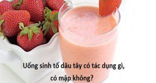 uong-sinh-to-dau-co-tac-dung-gi-co-map-khong