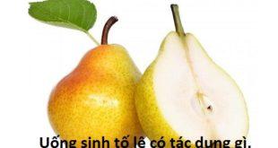 uong-sinh-to-le-co-tac-dung-gi-co-map-khong